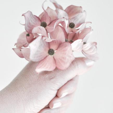 Różowy dereń w dłoni. Naturalny, ekologiczny materiał do wykonywania świec w pracowni artystycznej Green Dragonfly.